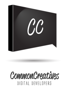 logo_concepts_flare-transparent